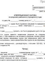 Апелляция: срок и основания для подачи, правила составления, документы